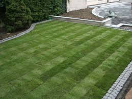 http://grasscuttingservices.ie/